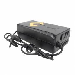 BIKIGHT666560V40AHMotoBicicletaeléctrica 40AH plomo ácido Batería Cargador Pulse Smart Charger